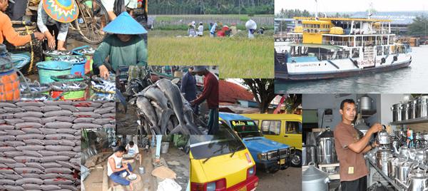 Ekonomi Banyuwangi